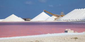 Pink Salt Pans (Pekelmeer), Bonaire