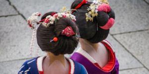Geisha apprentices are called maiko