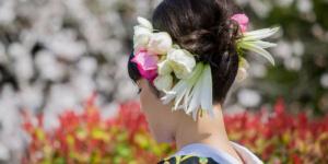 Japanese traditional Hair Style, kimono Girl
