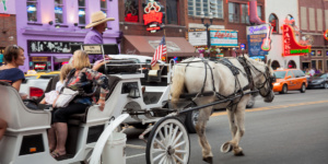 Horse-drawn carriage ride, Nashville