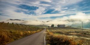Morning Fog Andalucia