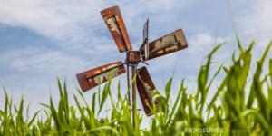 """Small windmill """"De Wieden"""" Giethoorn"""