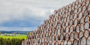 Speyside Cooperage, empty barrels - Scotland